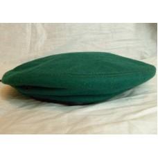 Зеленый берет