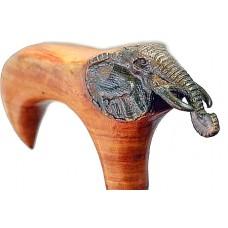 Трость слон
